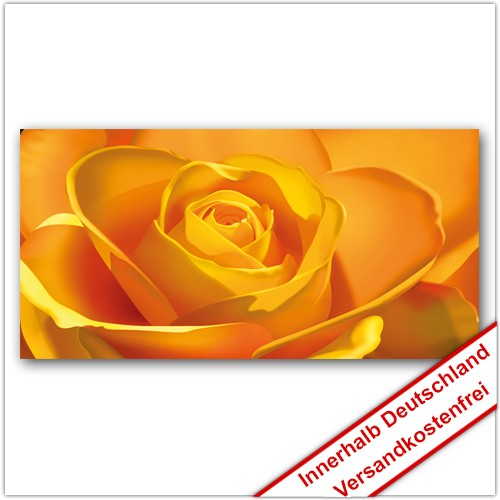 Leinwanddruck - Motive: Gelbe Rose