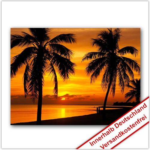 Leinwanddruck - Motive: Sonnenuntergang Palmen