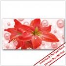Leinwanddruck - Motive: Rote Amarillis Blüte