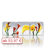 Leinwanddruck Motiv - Blüten 3 Teiler