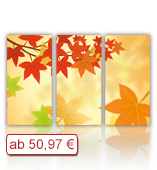 Leinwanddruck Motiv - Herbst Laub - 3 Teiler