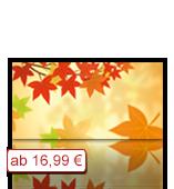 Leinwanddruck Motiv - Herbst Laub