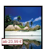Leinwanddruck Motiv - Palmen Strand Felsen