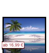 Leinwanddruck Motiv - Palmen Strand