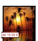Leinwanddruck Motiv - Sonnenuntergang Palmen 002
