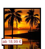 Leinwanddruck Motiv - Sonnenuntergang Palmen